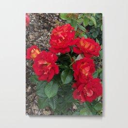 Bella Bouquets Metal Print
