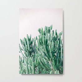 A Gathering of Cacti Metal Print