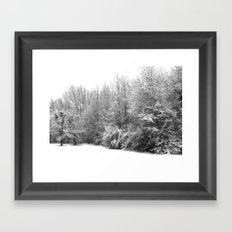 Snow 1 Framed Art Print