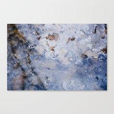 frozen lakes II Canvas Print