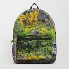 Bumper Pads Backpack