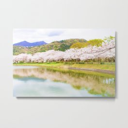 Cherry tree and pond Metal Print
