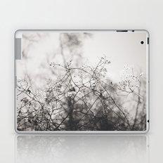 Last Spring Laptop & iPad Skin
