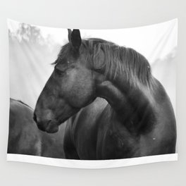 Black & White Horse Photograph ~ Cades Cove Riding Stables Tennessee Wall Tapestry