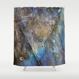 LABRADORITE 1 Shower Curtain