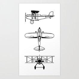 Biplanes Art Print