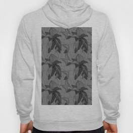 Croton in Grey Hoody