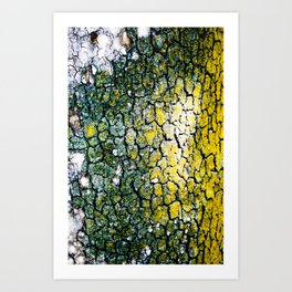 Yellow and Green Spotted Abstract Pigmented Tree Bark Print Art Print