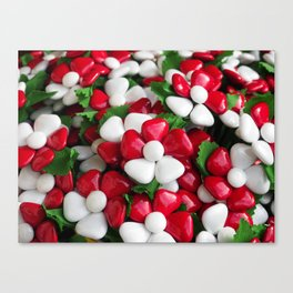 Flowers with sugared almonds as petals. Canvas Print