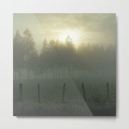 Misty Morning Metal Print
