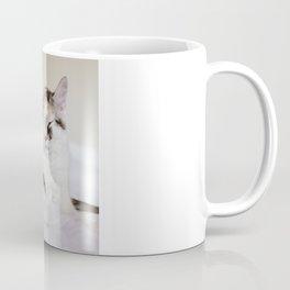 Sleepy cat (II) Coffee Mug