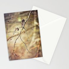 Wooded Stationery Cards