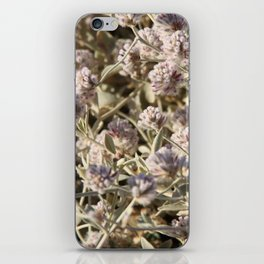 Outback flowers iPhone Skin
