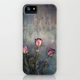 Three Dried Roses III iPhone Case