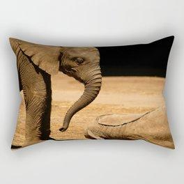 Play With Me Rectangular Pillow