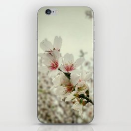 Almond Love #2 iPhone Skin