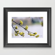 Every flower is a soul blossoming in nature Framed Art Print