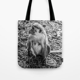 Toque Macaque Monkey Tote Bag