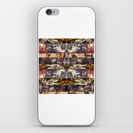 some point in, all direct north iPhone Skin