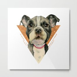 Puppy Eyes 5 Metal Print