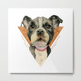 Puppy Eyes 5 Metal Print