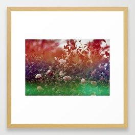 Flowers in Film, III Framed Art Print