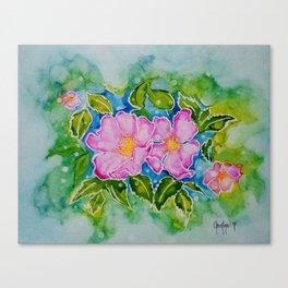 Alberta Wild Rose Canvas Print