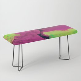 Cosmic Clouds Bench