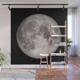 Surface of the Moon - Lunar Landscape Wall Mural