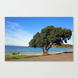 Sit and watch Canvas Print