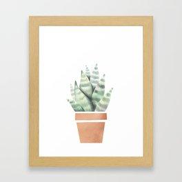 A little cactus Framed Art Print
