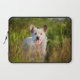 Single white stray tyke dog at the meadow Laptop Sleeve