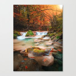lago en el rio urederra, river and lake in the forest Canvas Print