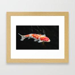 Day 45 Framed Art Print