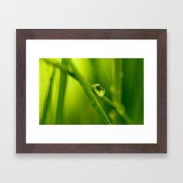 The essence of green Framed Art Print