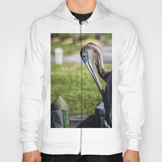 Pelican Itch Hoody