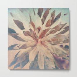 Vintage agava. Metal Print