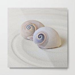 Zen Shell Harmony Still Life Metal Print