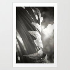 Catching the Light Art Print