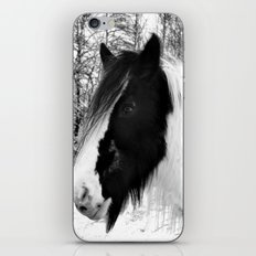 Horse. Black+White.Snow. iPhone & iPod Skin