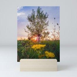 evening savor Mini Art Print