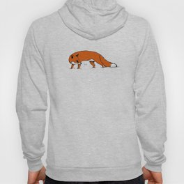 Sly Fox Hoody