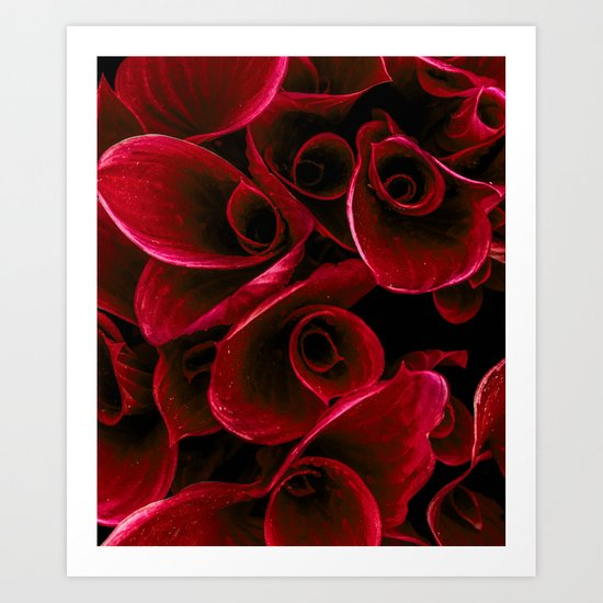 Red Blooms Art Print