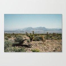 Nevada Desert Scene Canvas Print