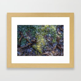 fairy tales moss Framed Art Print