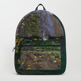Autumn leaves in the waterfall Backpack