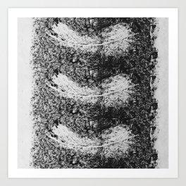 Feather Fall Printwork Art Print