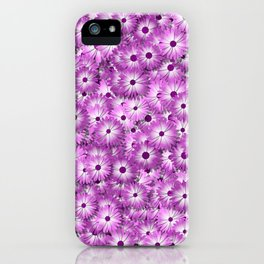 magenta daisy flowers iPhone Case