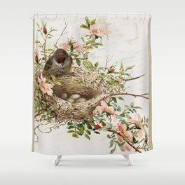 Vintage Bird with Eggs in Nest Shower Curtain