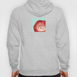Strawberry on Mint Hoody